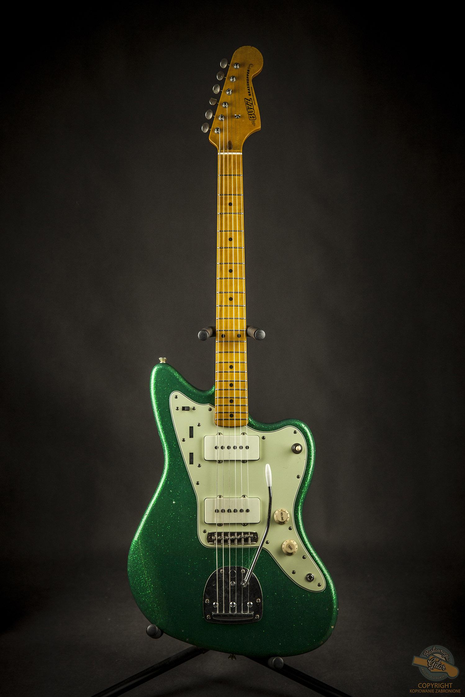 Buzz Guitars